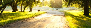 Sunset - Corral - Dirt Road - Mature Trees