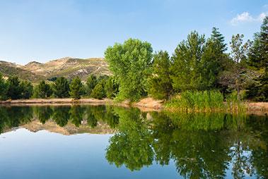 Natural Areas