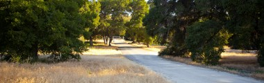 Wrangler's Gate - West Entrance - Placerita Canyon Road - Metal Gate
